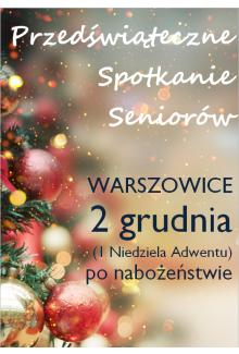 Seniorzy Warszowice